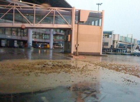 Bể phốt sân bay Nội Bài bị bật nắp, bốc mùi hôi thối